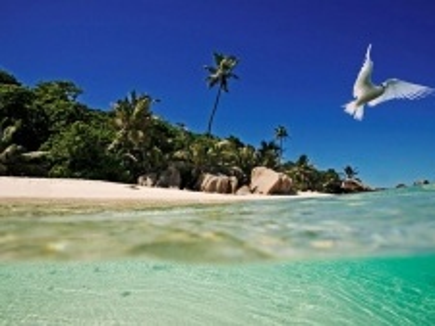 Seychelské ostrovy - Ostrov Cousine