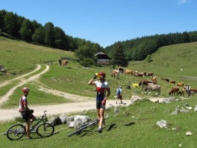 Pod štíty Julských Alp (cyklistika s průvodcem)