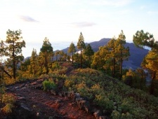 Kanárské ostrovy - La Palma