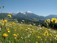 Rakousko - Horní Rakousko