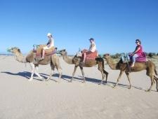 Tunisko - Gammarth